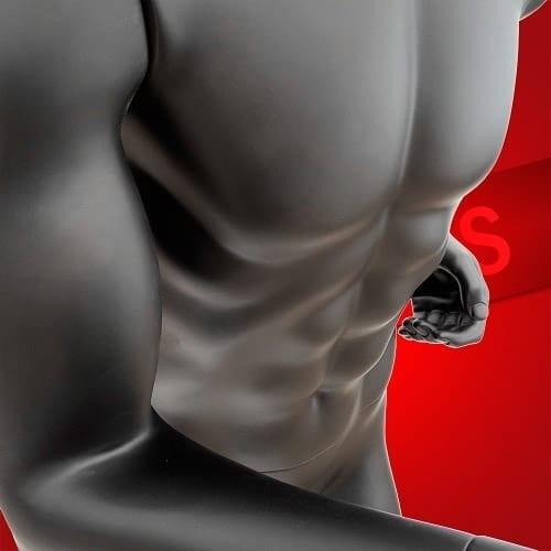 Bodybuilder Muscle Mannequin