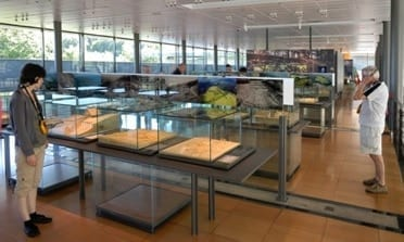 Visual Displays with Counters, Cabinets and Showcases